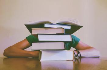 Online szakdolgozati börzét rendez a szociológia BA szak.