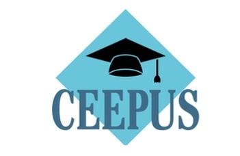 CEEPUS hálózati oktatói mobilitási pályázat a 2020/2021-es tanévre