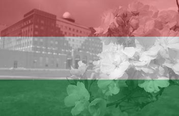 Hungarian language course
